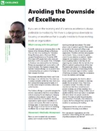 Avoiding the Downside of Excellence